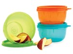 Tupperware Sales Consultant